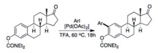 estrone arylation